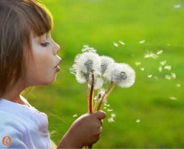 Tips & Hints for Easing Spring Hayfever